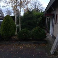 Swarte Ruiters, Leek (1/2)